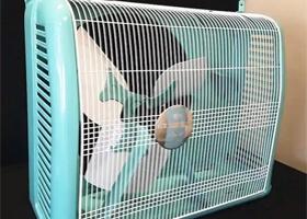 The fan casing